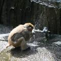 Photos: IMG_0020 カルキ臭い水の味