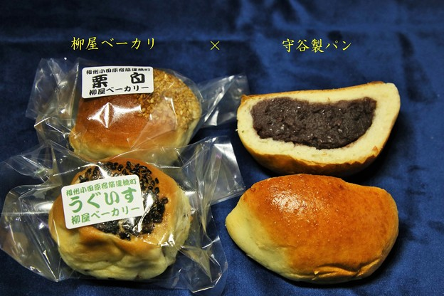 IMG_0722 あんパン対決