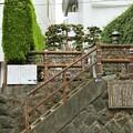 Photos: IMG_0489 北条氏政・氏照の墓所