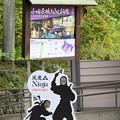 IMG_0643 NINJA館(小田原城歴史見聞館)