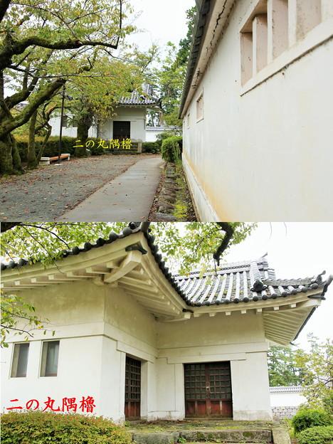 IMG_0647 小田原城土塀の風景
