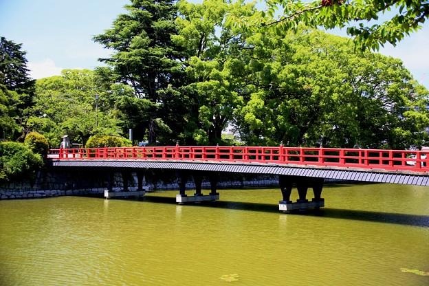 IMG_3232 学橋全景