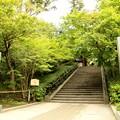 IMG_0723 北鎌倉・円覚寺入り口