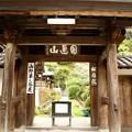 Photos: IMG_0794 円覚寺・秋の植物展示場