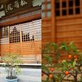 Photos: IMG_0801 円覚寺「老爺柿」