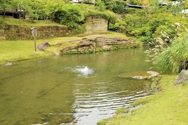 IMG_0957  円覚寺の妙香池「ススキ」