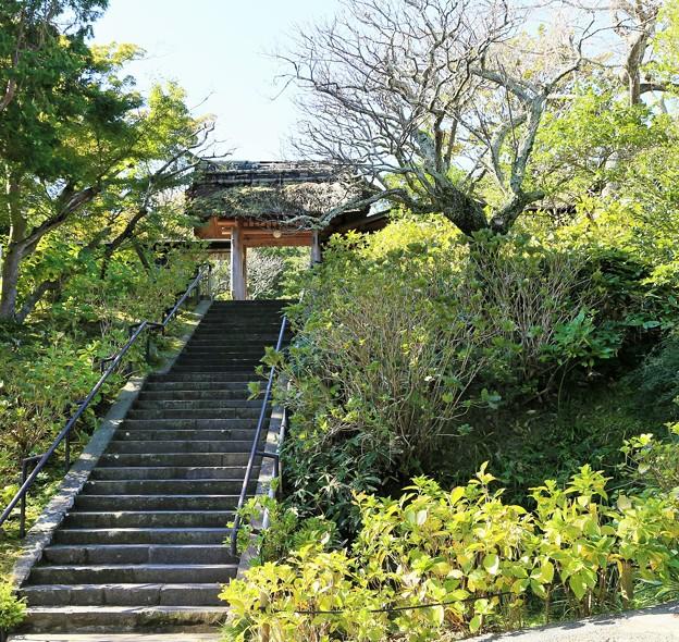 IMG_1673 北鎌倉・東慶寺の山門
