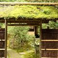 Photos: IMG_1177 東慶寺の茶室の門「苔」