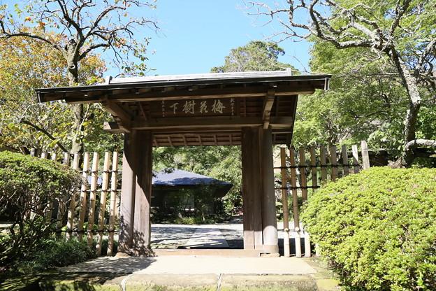 IMG_1701 浄智寺・布袋尊に通じる茶室の門