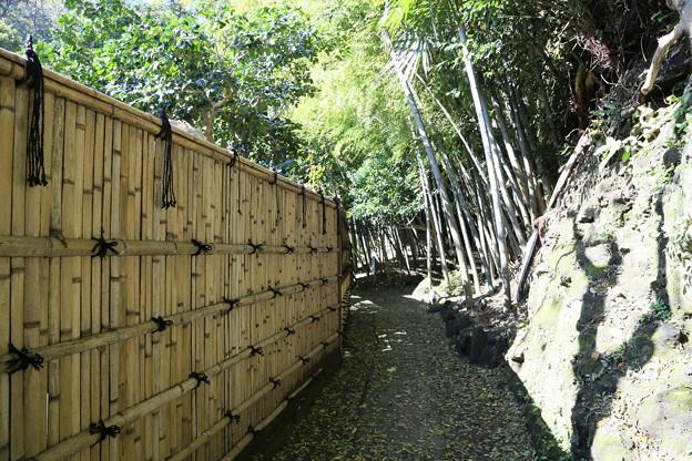 IMG_1722 浄智寺・竹林への通路