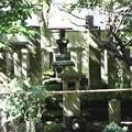 Photos: IMG_2073 明月院・北条時頼公墓所