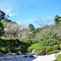 IMG_2183 明月院・枯山水庭園ー1