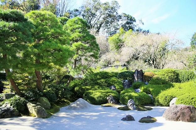 IMG_2184  明月院・枯山水庭園ー2
