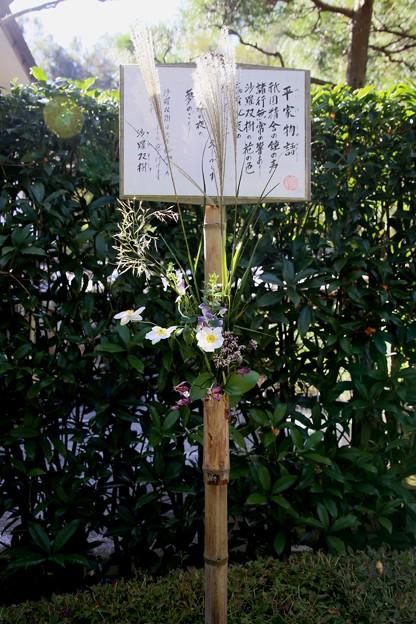 IMG_2198 明月院・ここにも生花