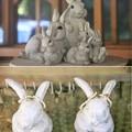 Photos: IMG_2211 明月院だからウサギなの?-2