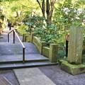 Photos: IMG_2240 明月院・総門の裏手に有る石橋