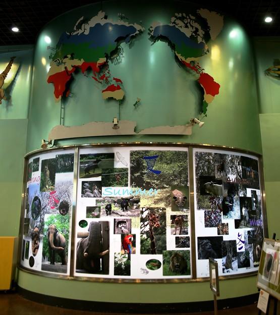 IMG_4665 多摩動物公園インフォメーションセンター&休憩所ー1