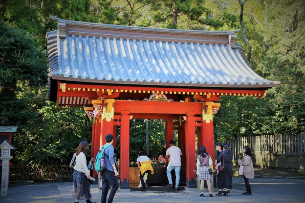 IMG_2257 鶴岡八幡宮・手水舎