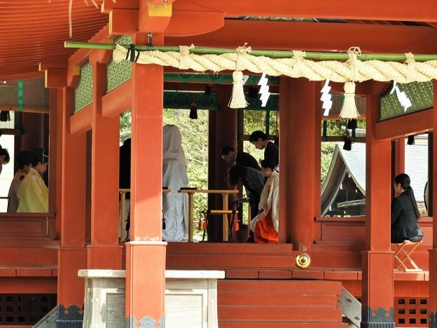 DSCN0203  鶴岡八幡宮・舞殿結婚式ー2(3月撮影)