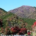IMG_5613 丹沢湖周辺道路より
