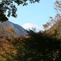 IMG_5653  富士山の見える景色-2