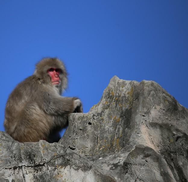 IMG_3526 エベレスト登頂ごっこ