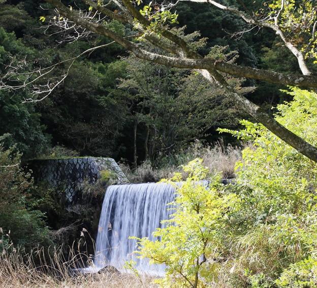 IMG_6201 幕山公園・堰の小滝