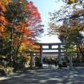 Photos: DSCN0703  参道より鳥居を見る