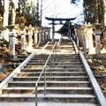 Photos: DSCN7769  奥宮を望む遥拝殿へ