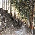 DSCN7978 遥拝殿前の急勾配の山道(裏参道)