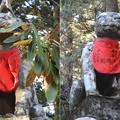 DSCN7980 遥拝殿鳥居の両脇に有る森玄黄斉作の神犬像2体