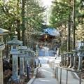 Photos: DSCN7984 遥拝殿の階段から随身門を望む