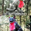 DSCN7993 随身門・犬神像(山犬・狼)
