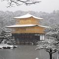 Photos: DSCN2424 雪中金閣寺-3(テーマタグ:ベストショット)