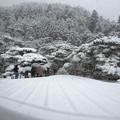 DSCN2433 雪中庭園ー2・墨絵の世界(テーマタグ:ベストショット)
