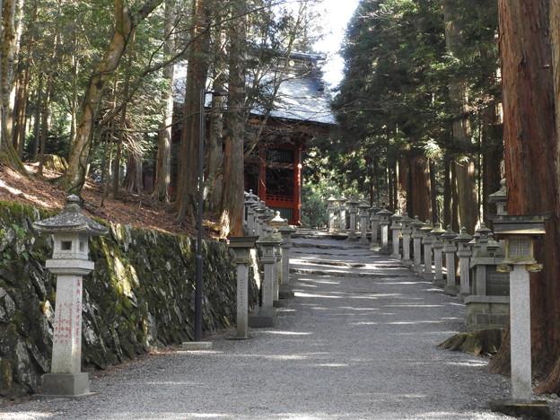 DSCN7879 三峯神社・参道
