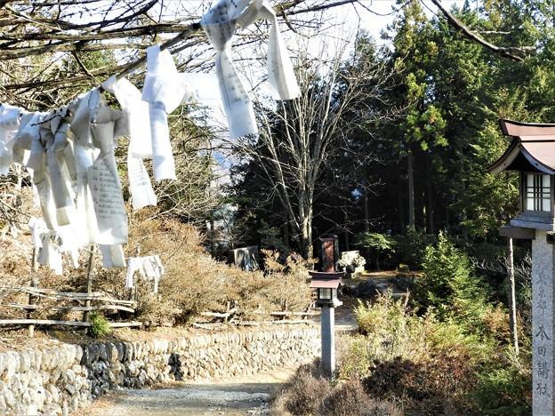 DSCN7959 日本武尊銅像高台からの下り道