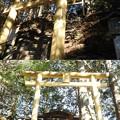DSCN8254 三峯神社・遠宮(御仮屋)の鳥居