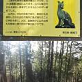 DSCN8015 三峰山地
