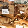 DSCN8452 三峯神社ビジターセンター内部ー1