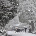DSCN2422 雪中金閣寺詣で(テーマタグ:雪景色)