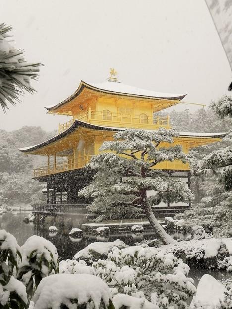 DSCN2636  雪中金閣寺ー1(テーマタグ:雪景色)