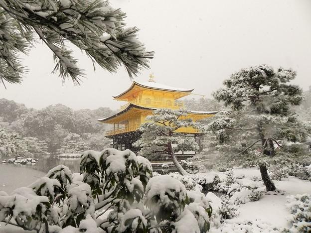 DSCN2640 雪中金閣寺ー2(テーマタグ:雪景色)