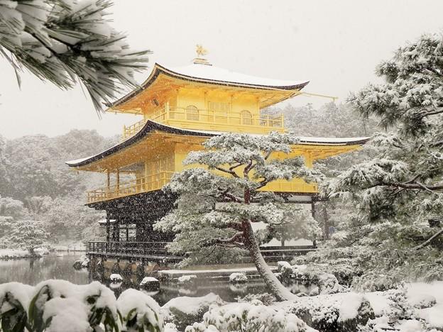DSCN2638 雪中金閣寺ー3(テーマタグ:雪景色)