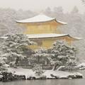 DSCN2634 雪中金閣寺ー4(テーマタグ:雪景色)