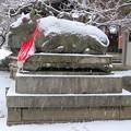 DSCN2411 北野天満宮・雪かぶりのお牛さん(テーマタグ:雪景色)