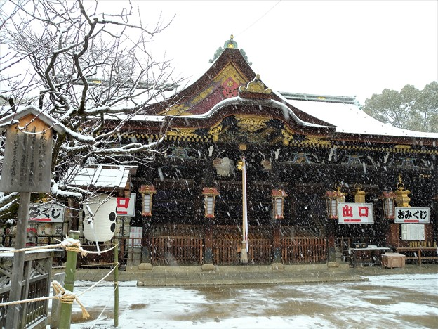 DSCN2417 雪中北野天満宮・社殿(テーマタグ:雪景色)