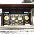 DSCN2646 醍醐寺・唐門(テーマタグ:雪景色)