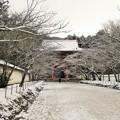 DSCN2648 醍醐寺・桜馬場(テーマタグ:雪景色)