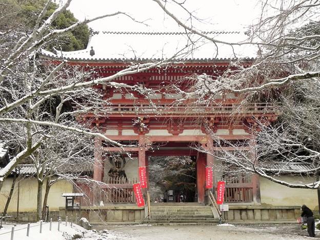DSCN2649 醍醐寺・西大門(仁王門) (テーマタグ:雪景色)